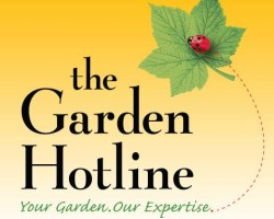 Garden Hotline from Facebook